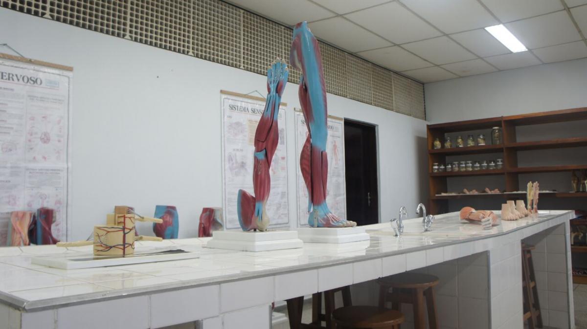 Laboratório de anatomia UNIVR